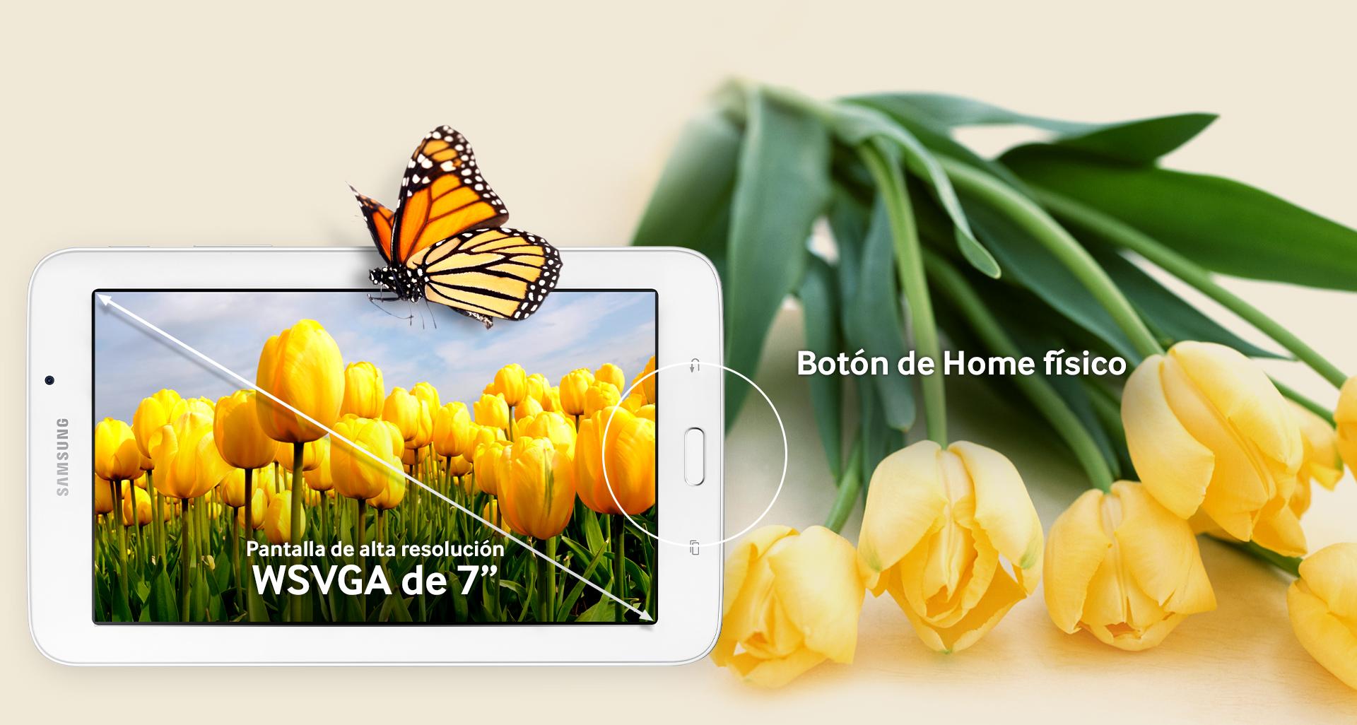 Samsung Galaxy Tab E 7.0 display